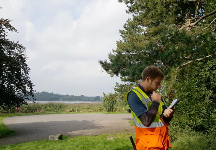 Tree Health and Safety Survey
